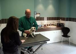 frais_vétérinaire